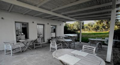 OLIVEMARE Offers Unique Culinary Experiences For Foodieswilling To Experience All The Flavors Of  Kefalonia